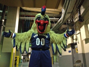 pierre-the-pelican